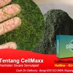 Fakta-Tentang-CellMaxx
