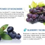 Grape-and-Blueberry-BRX-Maxxima