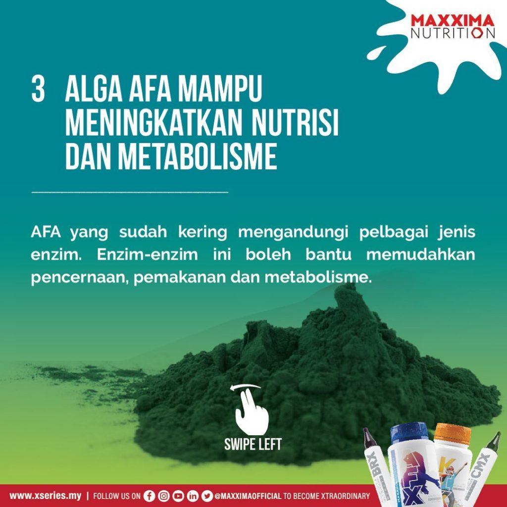 AFA Tingkat Metabolisme